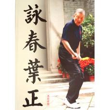 Buku Dasar Ip Ching Ving Tsun